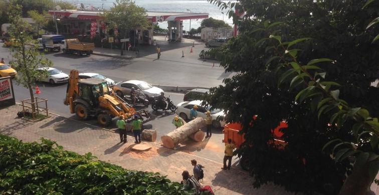 Kabataş projesi trafikle ve ağaç kesimiyle başladı, şimdi ne olacak?