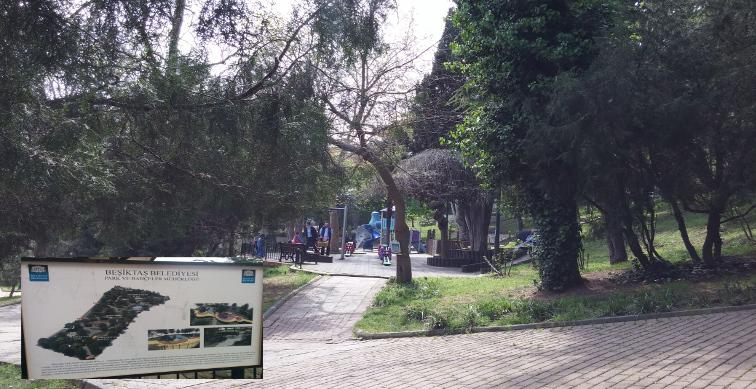 Beşiktaş Belediyesi uslanmıyor: Abbasağa Parkı'na 'yenileme' projesi – Politeknik