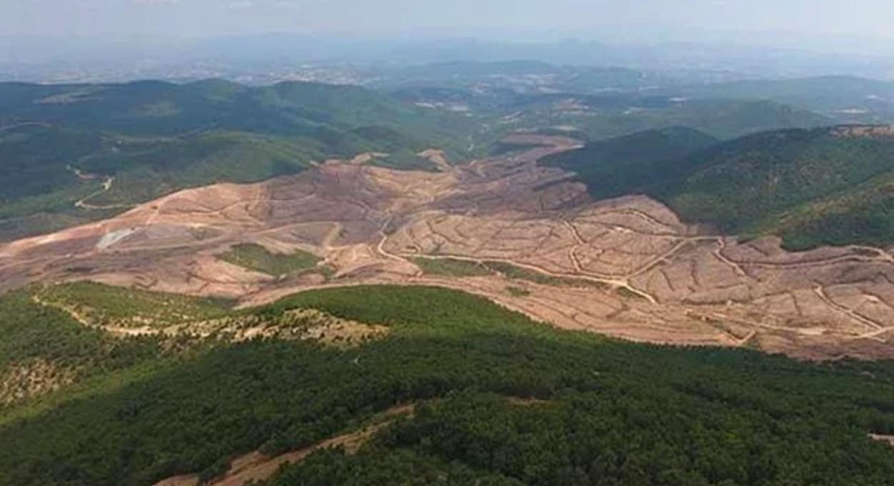 Kazdağları'nda ekolojik yıkımın mühendisi olma! – Politeknik