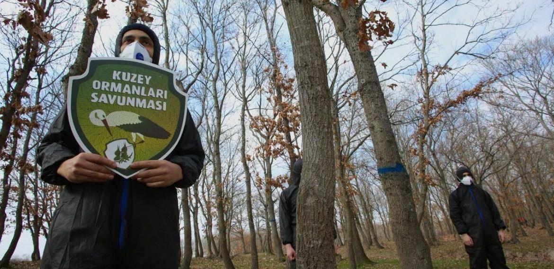 """Kuzey Ormanları Savunması: """"Ormanlar için harekete geçin, görevinizi yerine getirin!"""""""