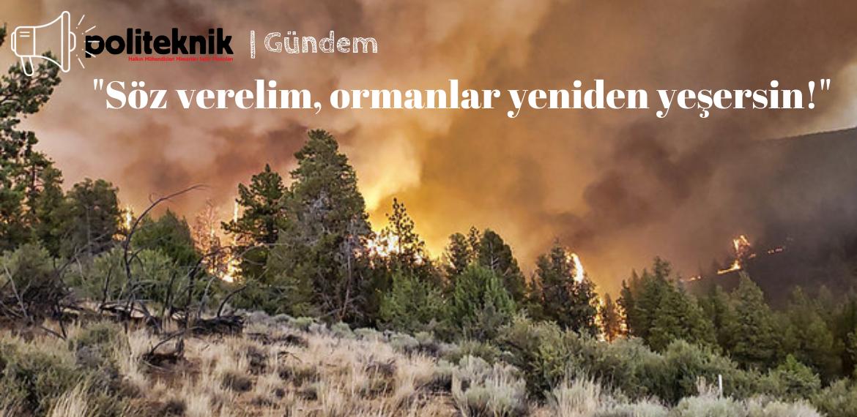 Söz verelim, ormanlar yeniden yeşersin! – Politeknik